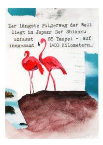 Typografie, Gestaltung, Kreativkurse, Workshops, Veranstaltungen, Flamingos, Flamingo, Pilgerweg, Malen, zeichnen, gestalten, intuition, visionen